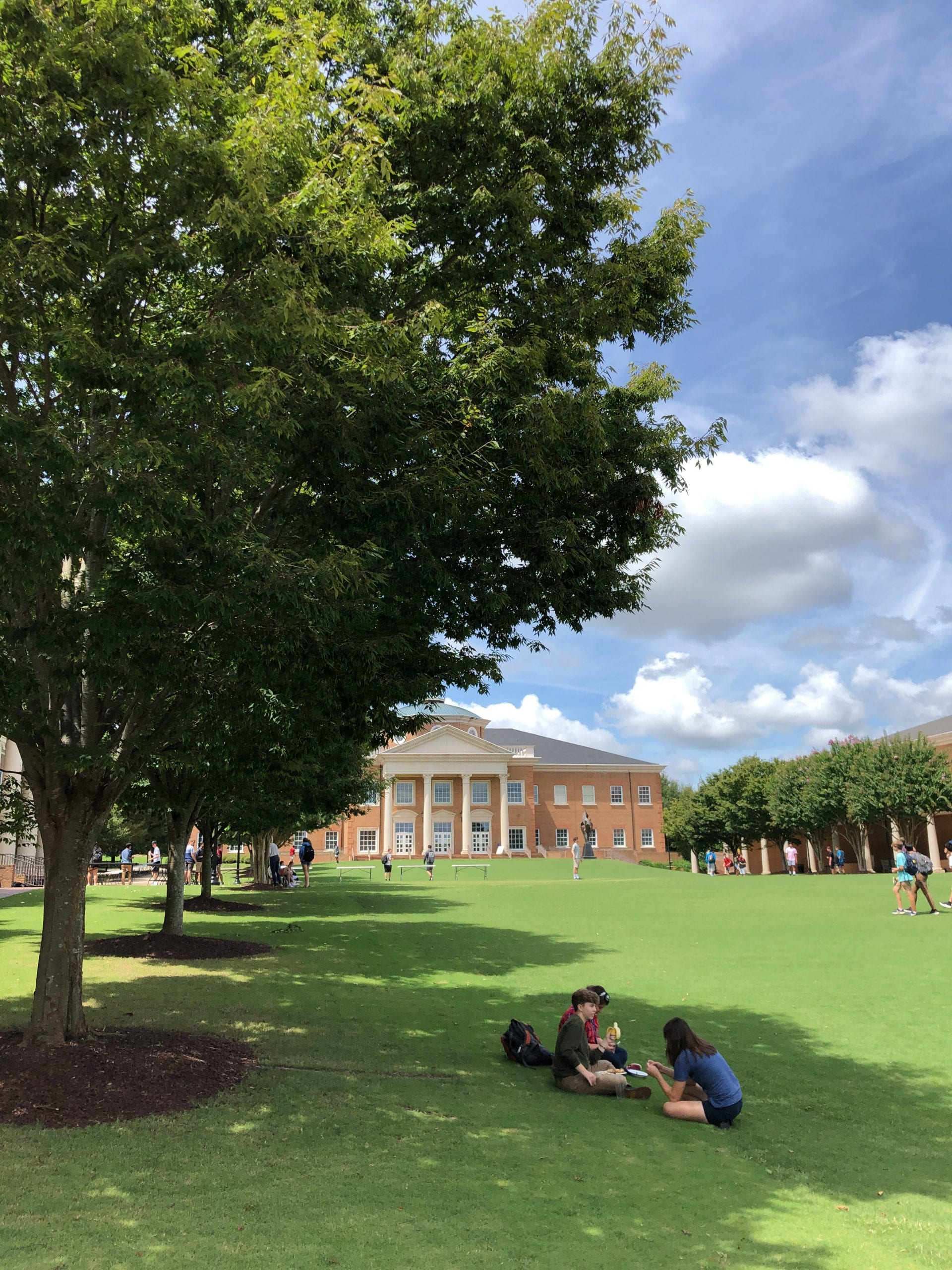 Students on quad in the shade of the trees